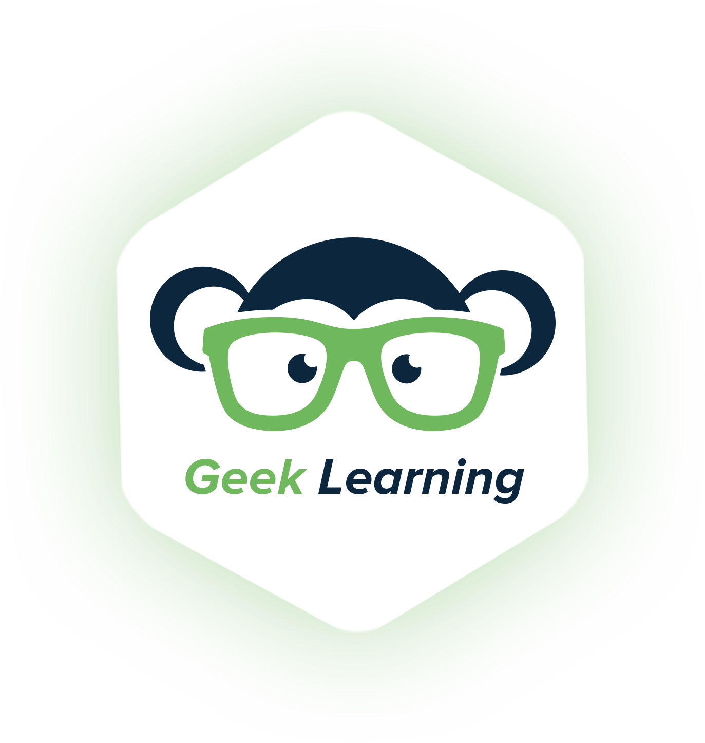Geek Learning